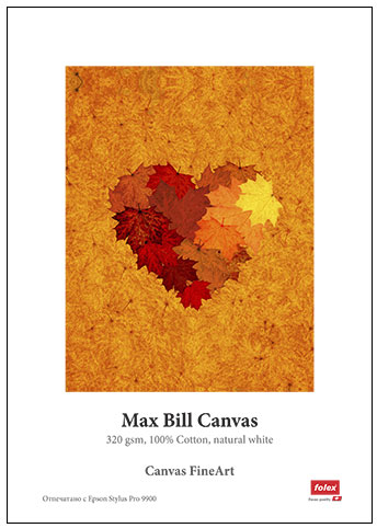 Канава - Max Bill Canvas